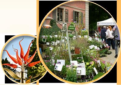 Faszination Garten Fruhjahrs Veranstaltung Programm Flyer